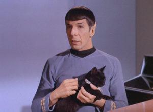 black-kat-spock