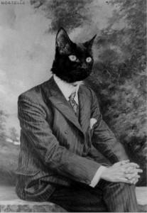 black-and-white-cat-man-vintage-favim.com-358054